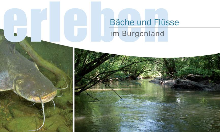 Broschüre 'Burgenländische Bäche und Flüsse'