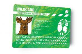 Alpen-Karpaten-Wildwanderkorridor