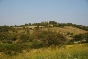Gemeindeschutzgebiete Matterburg