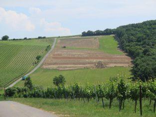 Weingartenterrassierung Deutschkreutz