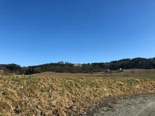 Landschaftskonzept Wolfau