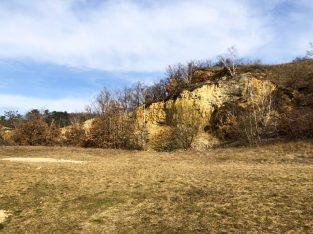 März 2021: Begehung Hornstein